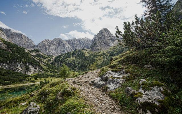 Dla kobiet Trekking